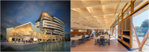 Timber Applications - Interior & Exterior Solutions @ NSW Teachers Federation Conference Centre | Surry Hills | New South Wales | Australia
