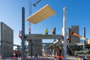 Cross-Laminated Timber: The Sustainable Choice of Microsoft Silicon Valley