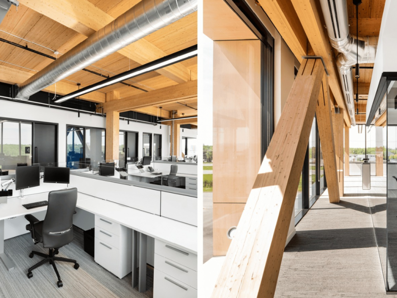 Bringing the Outdoors Inside: The Benefits of Biophilia in Architecture and Interior Spaces
