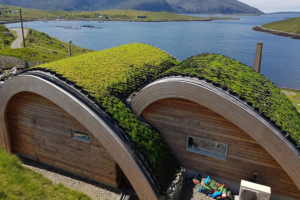 A Surprisingly Green Roof