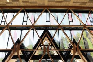 Three Storey Diagrid Design – Scion Innovation Hub